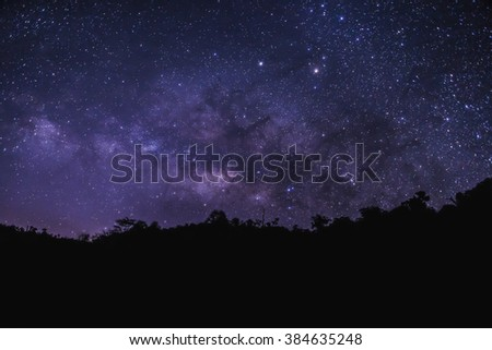 Beautiful sky with many stars above the forest. Milkway space background - stock photo