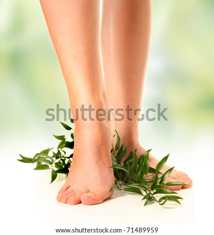beautiful slim woman's legs on green background