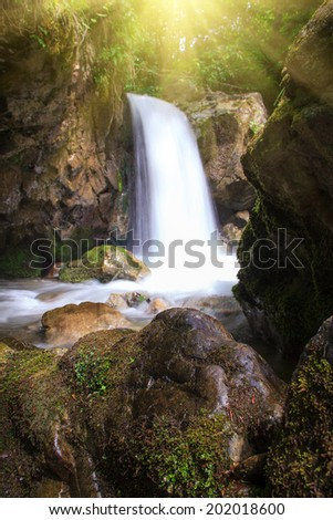 Beautiful small waterfall, landscape in the mountains with lush green bush, rocks and flowing water in sunlight.  - stock photo