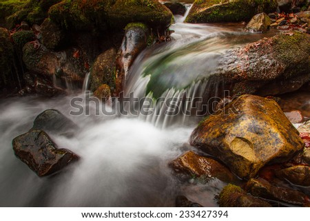 Beautiful small waterfall landscape in the mountains with lush green bush, rocks and flowing water. - stock photo