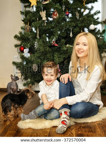 Beautiful smiling brother and sister sitting on the fur carpet near Christmas tree. Christmas tree background. Yorkshire terrier and Sphinx cat - stock photo