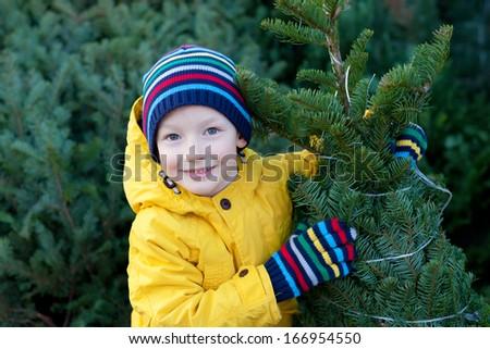 beautiful smiling little boy holding christmas tree - stock photo