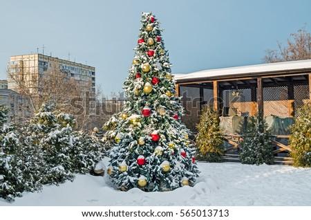 stock-photo-beautiful-snow-covered-chris