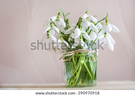 Beautiful snowdrops flowers in small decorative vase.Spring background