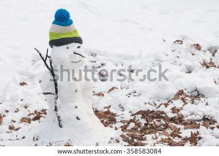Beautiful snowman - stock photo