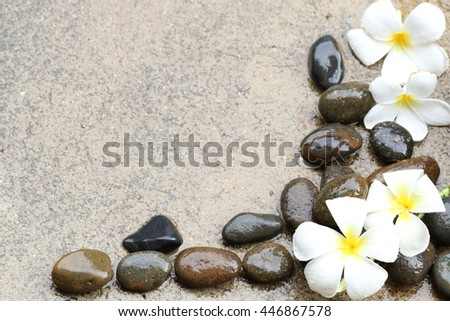 beautiful  softly flower on hard and colorful stone with freshwater imbue