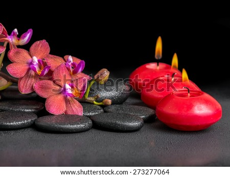 beautiful spa composition of blooming twig red orchid flower, phalaenopsis with water dew and candles on zen basalt stones - stock photo