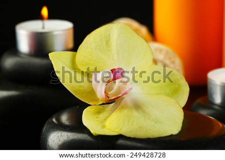 Beautiful spa composition with candles and orchid on dark background - stock photo