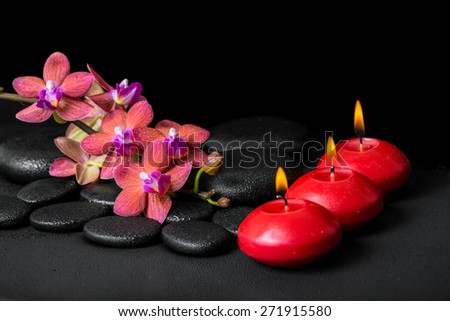 beautiful spa concept of blooming twig red orchid flower, phalaenopsis with water drops and candles on black zen stones - stock photo