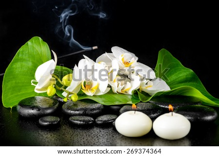 beautiful spa concept of blooming white orchid flower; phalaenopsis; green leaf with dew and candles on black zen stones - stock photo