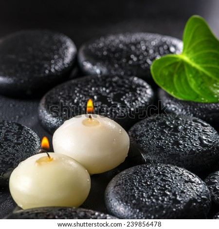 beautiful spa concept of green leaf Calla lily and candles on zen basalt stones with drops, closeup - stock photo