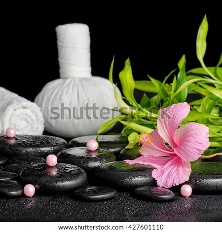 beautiful spa concept of pink hibiscus flower, bamboo, thai herbal compress ball, candles and stones with dew, close up - stock photo