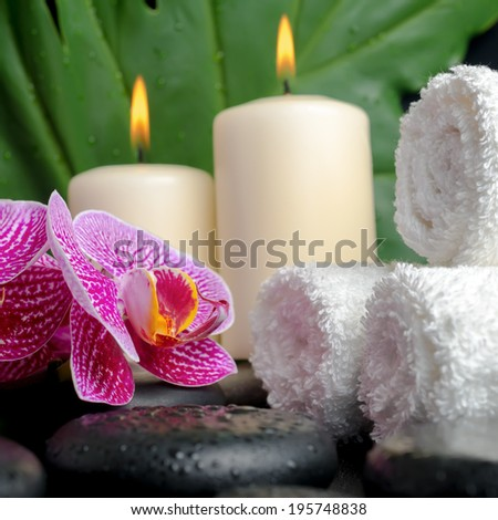 Beautiful spa concept of zen stones with drops, blooming twig of stripped violet orchid (phalaenopsis ), big green leaf  and stacked of towels and candles, closeup - stock photo