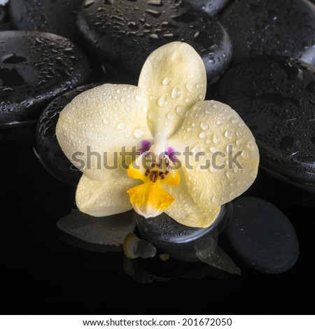 Beautiful spa set of yellow orchid (phalaenopsis), zen stones with drops, candles and stacked of towels on reflection water, closeup   - stock photo