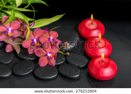 beautiful spa setting of twig red orchid flower, phalaenopsis, bamboo with water dew and candles on zen basalt stones, closeup