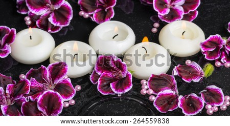 beautiful spa still life of geranium flower and candles in ripple reflection water, Royal Pelargonium, panorama - stock photo