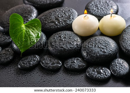 beautiful spa still life of green leaf Calla lily and candles on zen basalt stones with drops, closeup