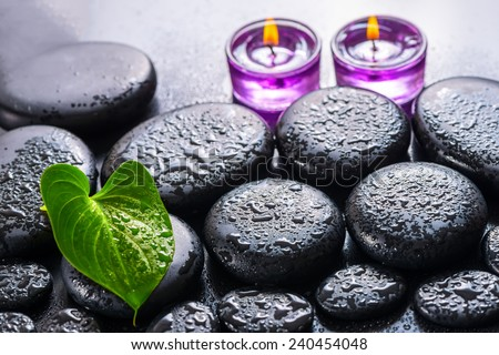 beautiful spa still life of green leaf Calla lily, ice and lilac candles on zen basalt stones with drops - stock photo