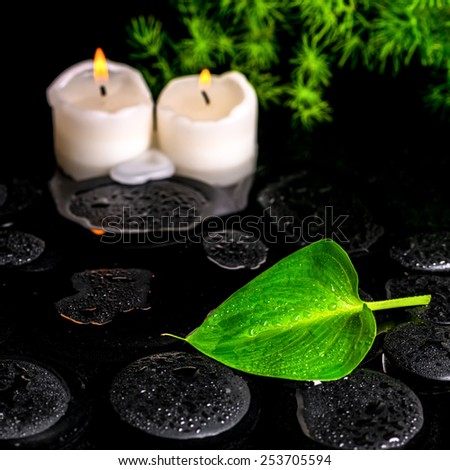 beautiful spa still life of green leaf Calla lily, twig and candles on zen basalt stones with dew in water, closeup - stock photo
