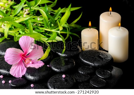 beautiful spa still life of pink hibiscus flower, twig bamboo, beads and white candles on zen basalt stones with drops