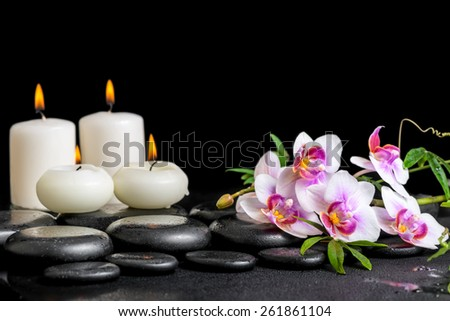 beautiful spa still life of purple orchid phalaenopsis green branch and candles on black zen stones with drops - stock photo