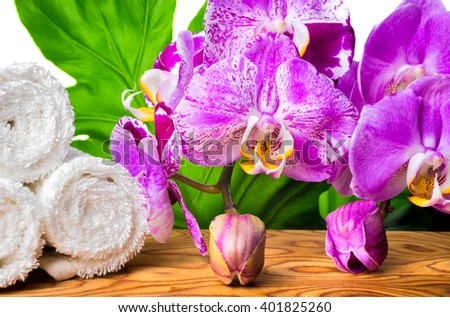 beautiful spa still life with blooming lilac orchid, white stones, towels and big tropical green leaf on root wood background, close up  - stock photo