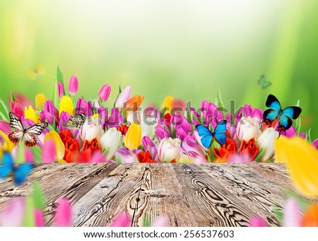 Beautiful spring background with wooden table. Ready for your product.