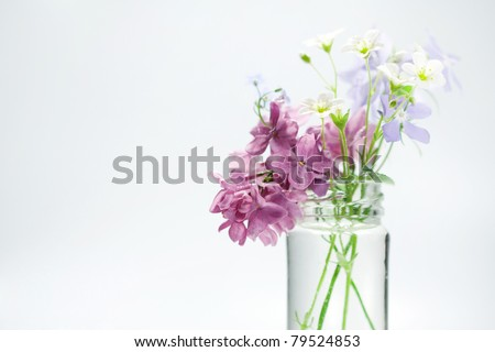 Beautiful spring flowers in a vase - stock photo