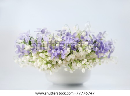 Beautiful spring flowers in a vase on white background - stock photo