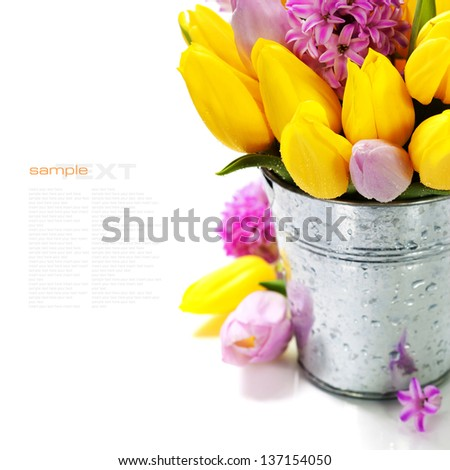 Beautiful spring flowers in vase over white (with easy removable sample text)