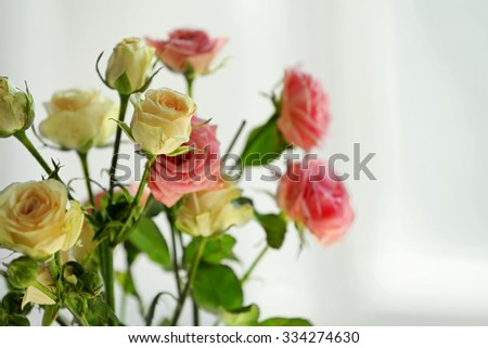 Beautiful spring flowers on soft window background close-up - stock photo
