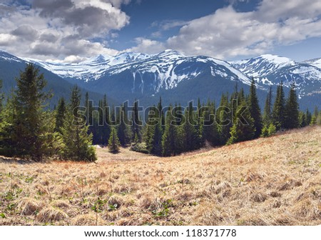 Beautiful spring landscape in the mountains - stock photo
