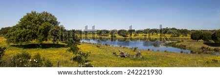 Beautiful spring landscape view of the Alentejo region in Portugal with a lake and flowers field. - stock photo