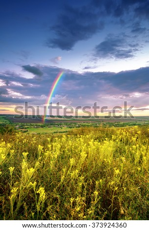 beautiful spring or summer  landscape with flowers, cloudy sky and rainbow. natural background - stock photo