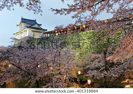 Beautiful spring scenery of a majestic Japanese castle on top of a hill surrounded by romantic sakura cherry blossoms in evening twilight in Tsuyama, Okayama, Japan - stock photo