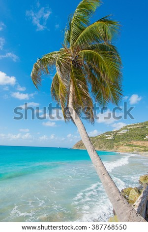 Beautiful St Martin Caribbean ocean vacation destination vertical scene - stock photo