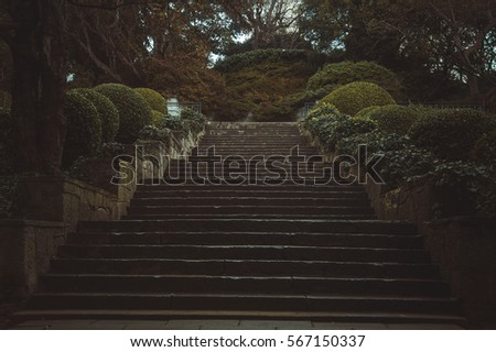 Beautiful stairs in the garden