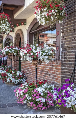 Beautiful street decorated with Petunias