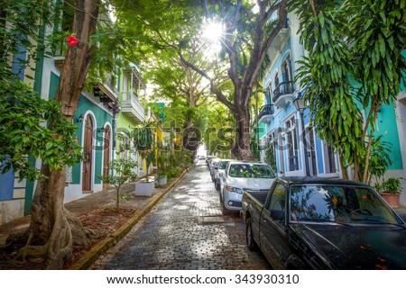 Beautiful street full of trees in old San Juan, Puerto Rico - stock photo