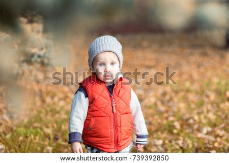 Beautiful stylish baby boy 2 years old walking in fallen leaves - autumn scene. Toddler have fun outdoor in autumn yellow park