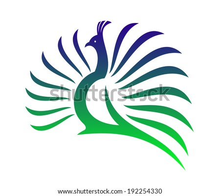 Beautiful stylized vector peacock  with its tail feathers opened in a mating display in shades of green and blue on a white background. Vector version also available in gallery - stock photo