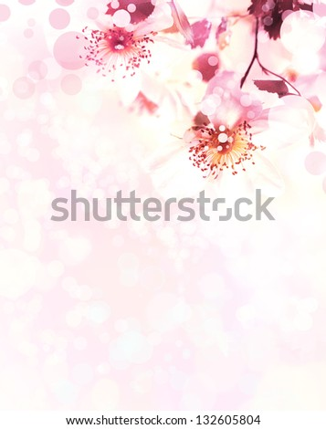 Beautiful summer background background with pink flowers and purple blurs/Spring border background with pink blossom - stock photo