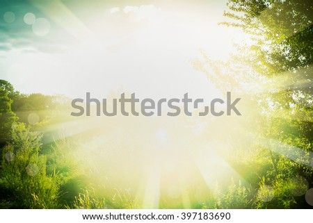 Beautiful  summer background with green grass, foliage and sun rays. Outdoor summer nature background with sunshine - stock photo