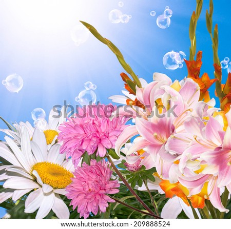 Beautiful summer flowers background - stock photo