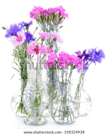 Beautiful summer flowers in vases, isolated on white - stock photo