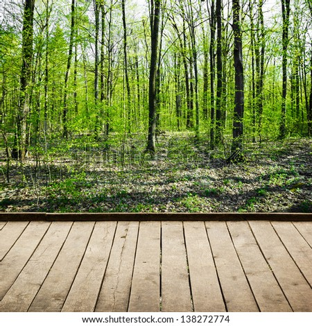 Beautiful summer forest and wood planks floor - stock photo
