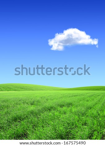 Beautiful summer landscape. A green field, blue sky - stock photo