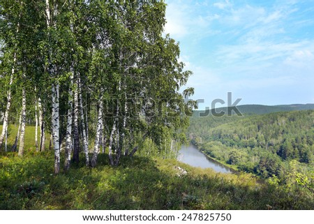 beautiful summer landscape birch grove in the Urals on a clear sunny day - stock photo