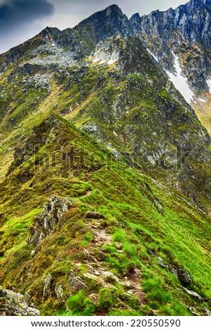 Beautiful summer landscape from Fagaras mountains, Romania - stock photo