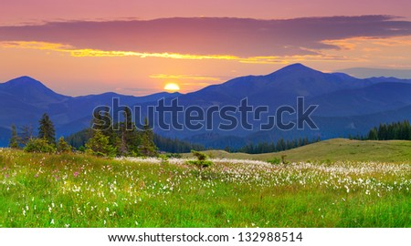 Beautiful summer landscape in the  Carpathian mountains. Ukraine, Europe. - stock photo